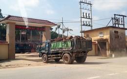 Nam Đàn, Nghệ An: Xe tải chở đất như 'trẩy hội', người dân bức xúc