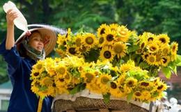 Những mùa hoa gửi lại