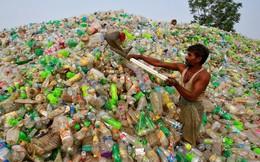 Con người 'bức tử' trái đất bằng 500 tỷ túi nhựa mỗi năm
