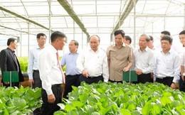 Cắt giảm mạnh các rào cản để thu hút đầu tư vào nông nghiệp