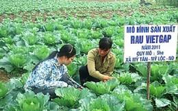 Hà Nội mở hội chợ đón nông sản sạch