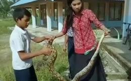 Nữ giáo viên dùng tay không bắt con trăn dài 2 mét bò vào trường