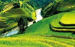 81 bức ảnh đẹp về Việt Nam, Trung Quốc