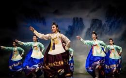 Trải nghiệm văn hóa Hàn Quốc tại Hội An