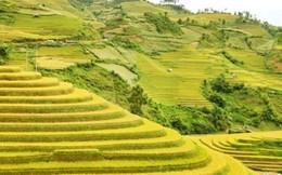 Du lịch Bắc, Trung, Nam dịp lễ 2/9 đều hút khách