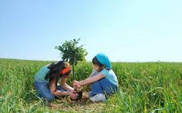 Vừa lướt mạng bạn vẫn có thể tham gia trồng cây xanh bảo vệ môi trường sống