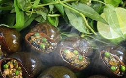 Ăn ốc bươu nướng tiêu xanh một lần để nhớ… cả đời