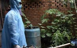 Đồng Nai: Một phụ nữ tử vong do bị sốt xuất huyết