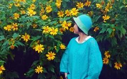 Mênh mang những triền hoa dã quỳ trong lòng Hà Nội
