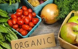 Thực phẩm hữu cơ chưa chắc đã... hữu cơ
