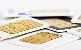 Kiểm tra thông tin SIM chính chủ để tránh bị thu hồi