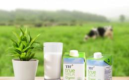 Sống chất lượng như bò sữa hữu cơ TH
