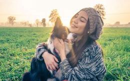 Cảnh giác với những căn bệnh nguy hiểm có thể bị lây từ thú cưng