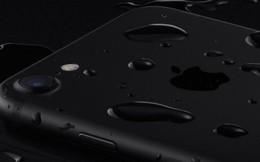 Cuộc chiến chống nước: iPhone 7 vs Galaxy S7