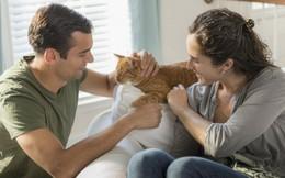 Bạn trai 'mê' chó mèo hơn người yêu