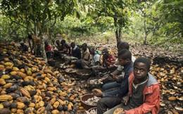 'Nô lệ tuổi mới lớn' ở châu Phi
