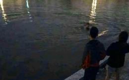 Hà Nội: Đang đi dạo, đôi nam nữ nhảy xuống hồ trong đêm