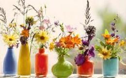 Bí mật chơi hoa bền mà đẹp