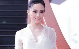 Vụ án Hoa hậu Phương Nga: Tiếp tục gia hạn điều tra 3 tháng