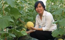 'Bà trùm' rau đất Cảng đánh đổi nhiều thứ khi làm thực phẩm sạch