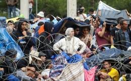 Khủng hoảng di cư châu Âu - ác mộng của phụ nữ và trẻ em