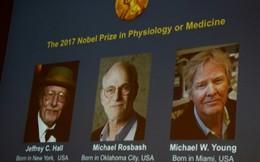 3 tiến sĩ giải mã đồng hồ sinh học cơ thể giành giải Nobel Y học 2017