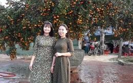 Nườm nượp khách đến xem cây quýt cổ thụ giá trăm triệu ở Vinh