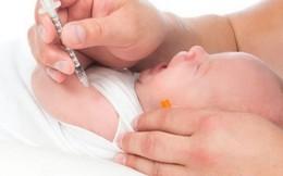 Bản chất và phản ứng của vaccine