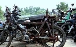 TPHCM: Đấu giá hơn 16 ngàn xe máy vi phạm giao thông quá hạn xử lý