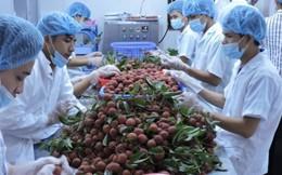 Thu 2,2 tỷ USD từ bán rau, quả