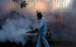 TP HCM công bố dịch Zika cấp phường