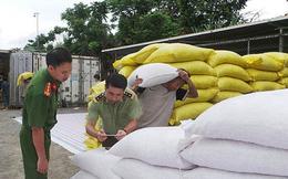 Lào Cai điều tra hơn 440 tấn hạt dẻ không rõ nguồn gốc