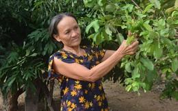 Xây dựng gia đình '5 không, 3 sạch' ở Hà Tĩnh: Thay đổi nếp sống bắt đầu từ nếp nghĩ
