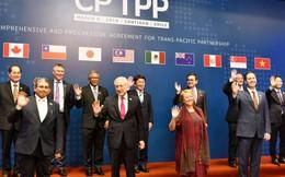Tăng cường tuyên truyền thông tin về thị trường các nước tham gia CPTTP