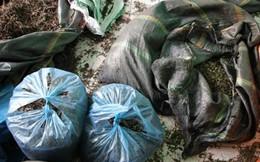 Hải Phòng: Phát hiện 3,5 tấn thuốc đông y không rõ nguồn gốc xuất xứ