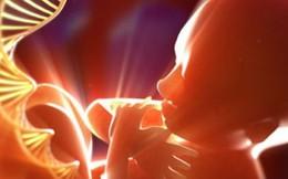 Chuyên gia tư vấn tránh sinh con bị tan máu bẩm sinh