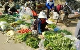 Giá rau xanh Hà Nội tăng vọt sau Tết