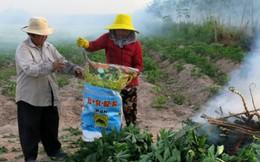 """Tây Ninh: Xây dựng nông thôn mới từ """"chìa khóa"""" không đói nghèo"""