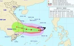 Bão số 6: Người dân Bình Định căng mình chống bão