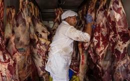 Quyết định tạm ngừng nhập khẩu thịt từ Brazil