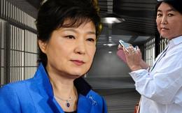 Cựu Tổng thống Park Geun-hye: Từ danh vọng đến vực thẳm