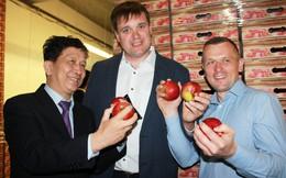 Ấn tượng xứ sở trồng táo lớn nhất Ba Lan