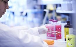 Phương pháp chữa ung thư bằng sữa mẹ sắp thành hiện thực