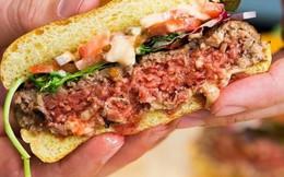 Bánh burger làm từ thực vật sẽ giúp bảo vệ môi trường
