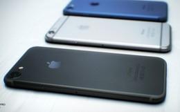iPhone 7 'phá giá' đàn em tới 100 USD