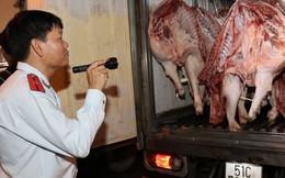 Dịch tả lợn châu Phi 'uy hiếp' TPHCM qua đường tiểu ngạch và giết mổ lậu