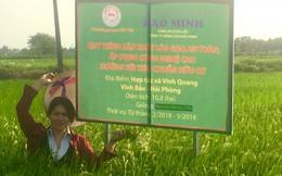 Tổng giám đốc Bùi Thị Hạnh Hiếu đau đáu với 40 thương hiệu gạo Việt