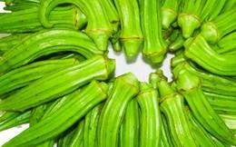 Đậu bắp có giá trị như 'viagra' thực vật