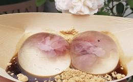 Bí quyết làm mochi giọt nước trong veo đúng chuẩn Nhật Bản