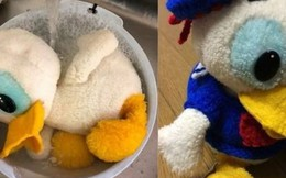 Bảo tàng Nhật Bản 30 năm chờ tìm chủ nhân của 1 món đồ chơi thất lạc